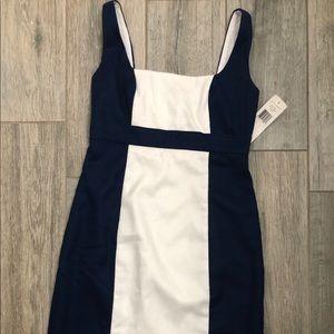 Lauren Ralph Lauren Navy Blue & White Sheath Dress